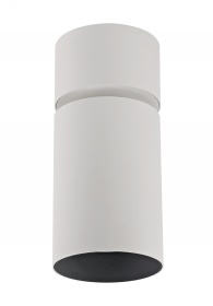 Eos A 20 Indoor Surface Mounted Luminaires Dlux Multidirectional Surface Mount