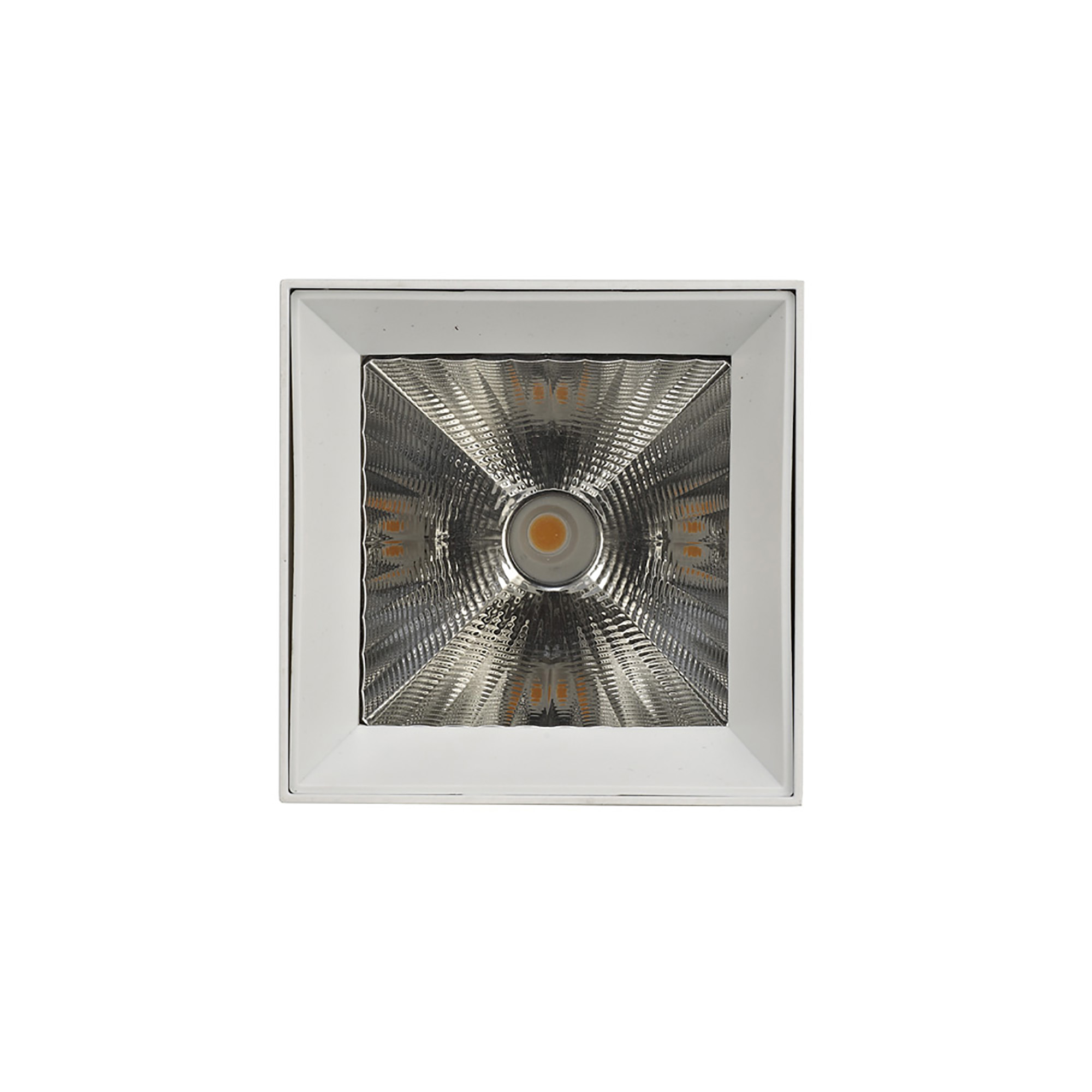 Eox 30 Indoor Surface Mounted Luminaires Dlux Unidirectional Surface Mount