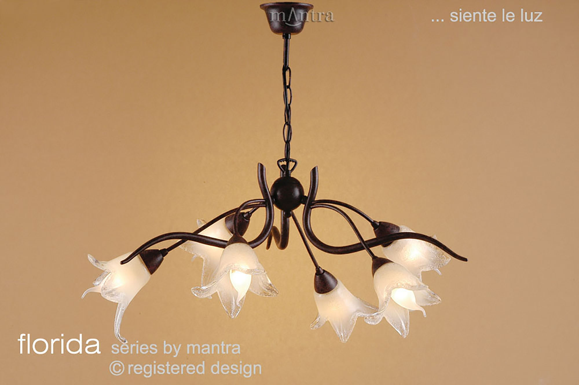 Florida Ceiling Lights Mantra Traditional Ceiling Lights