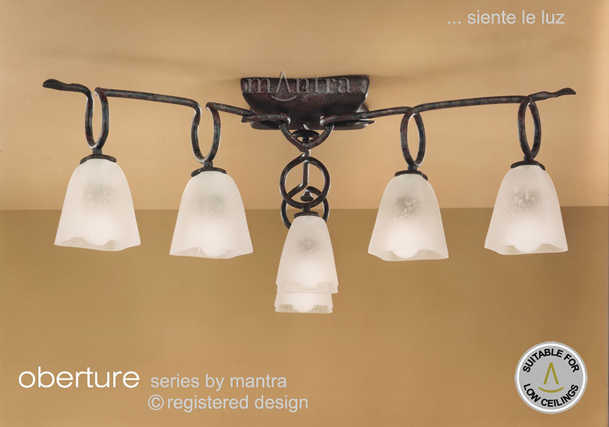 Oberture Ceiling Lights Mantra Traditional Ceiling Lights