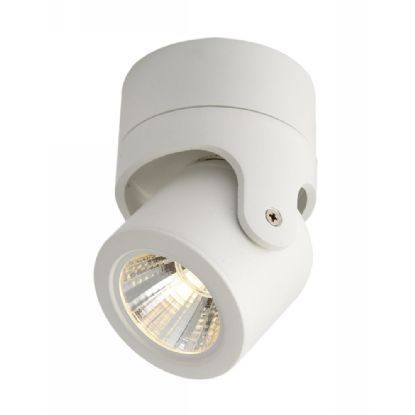 Eda 10 Indoor Surface Mounted Luminaires Dlux Multidirectional Surface Mount